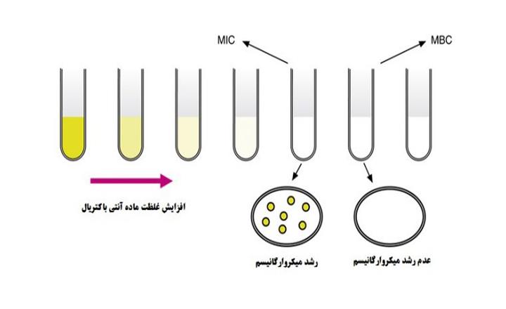آزمون آنتی باکتریال تعیین MIC و MBC