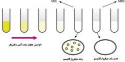آنالیز آنتی باکتریال تعیین MIC/MBC