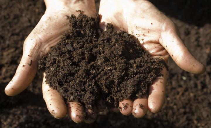 آنالیز خاک