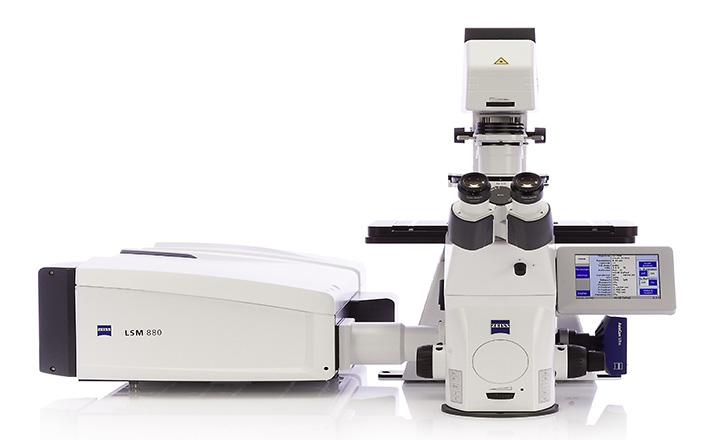 میکروسکوپ کانفوکال Confocal