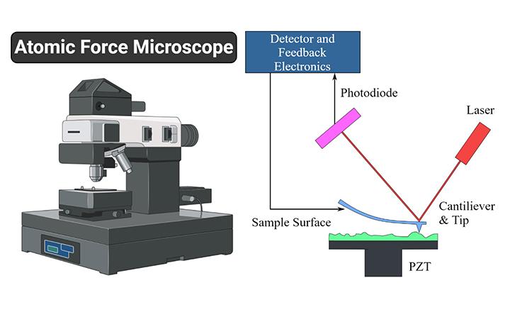آشنایی با میکروسکوپ نیروی اتمی (AFM)